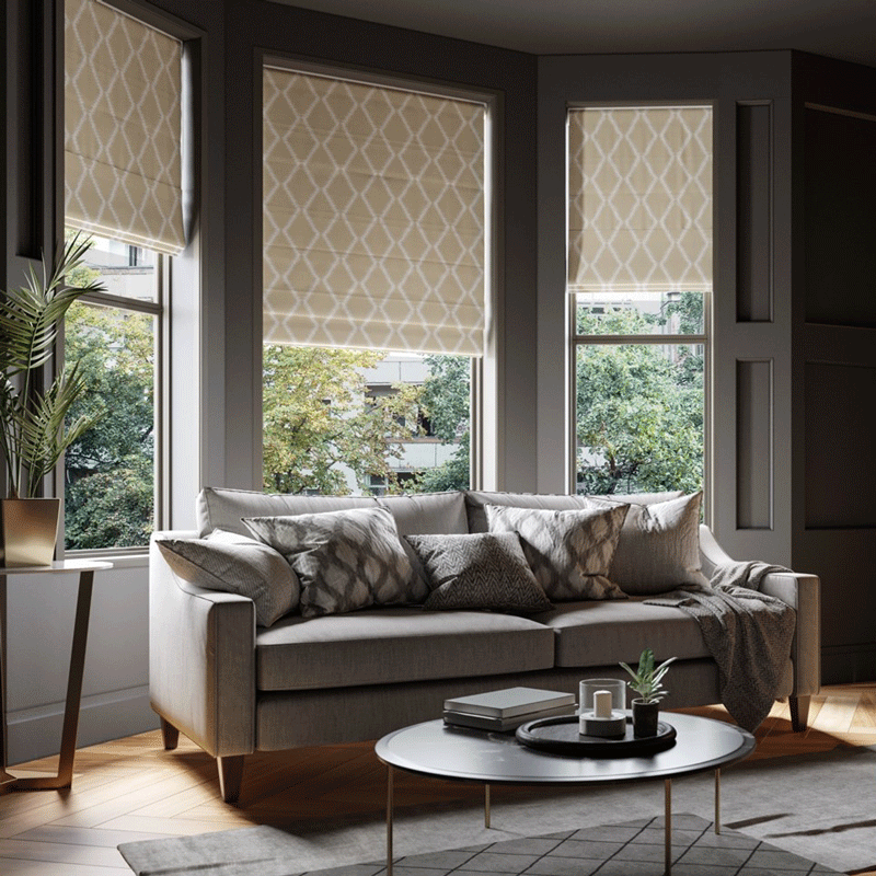 Patterned roman blinds in big living room windows