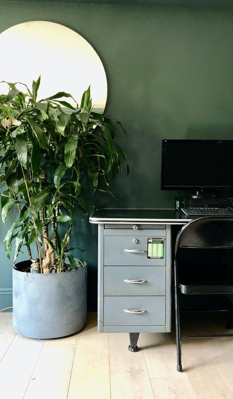 Home Office with a big house plant and jewel green walls