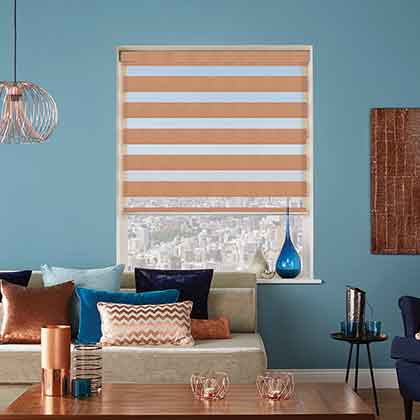Fitting Vision Day and Night Blinds