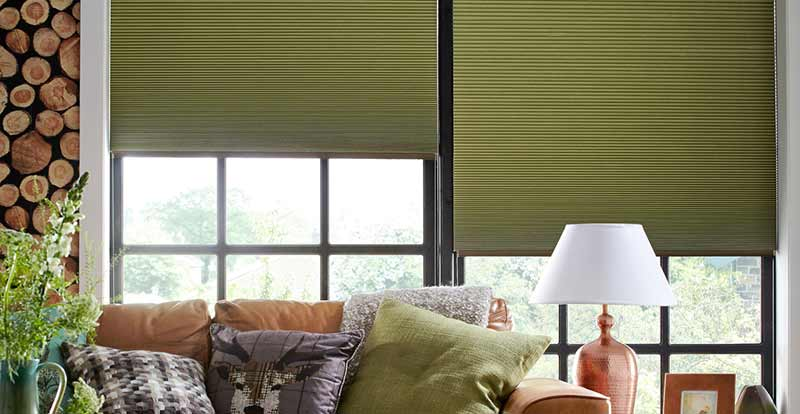 Solar Pleated blinds