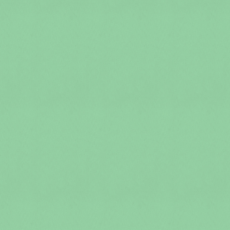 Bermuda Blackout Mint swatch