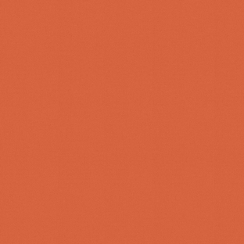 Palette Burnt Orange