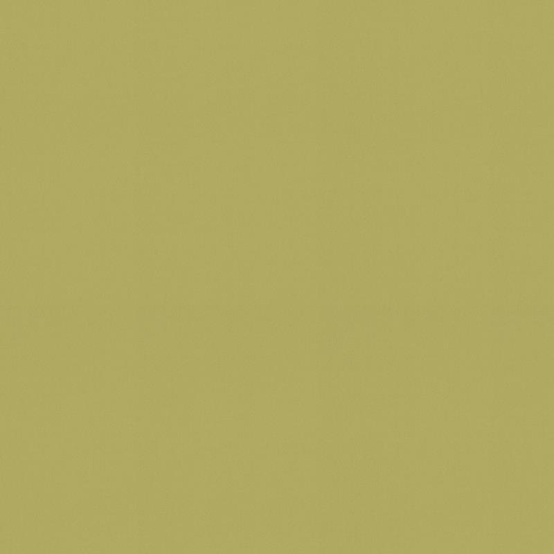 Palette Lime Green