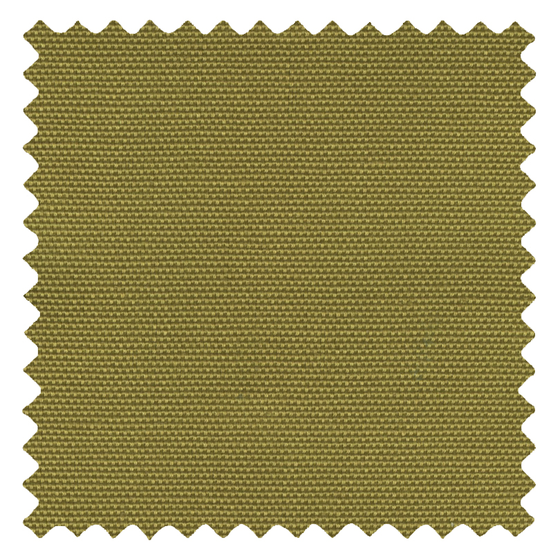 Panama Avocado swatch