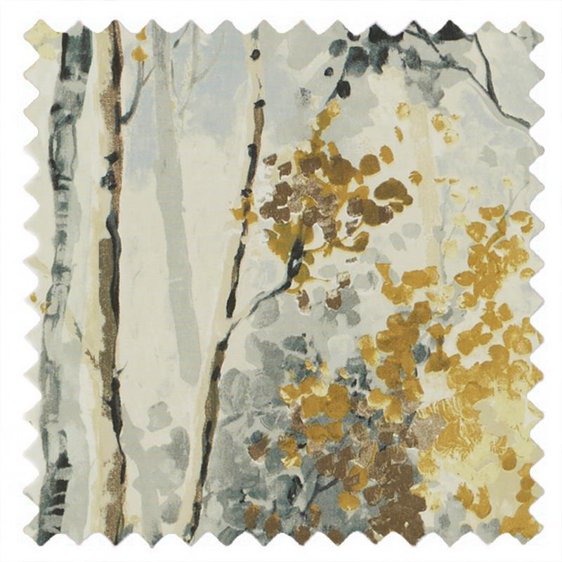 Silver Birch Shadow