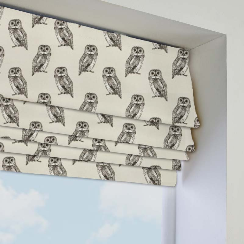 Owlet Canvas