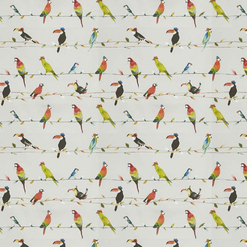 Toucan Talk Tropical