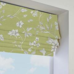 Roman Blinds Etched Vine Fern