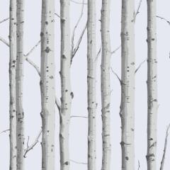 Woodland Silver Birch swatch