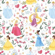 Disney Collection Disney Princess